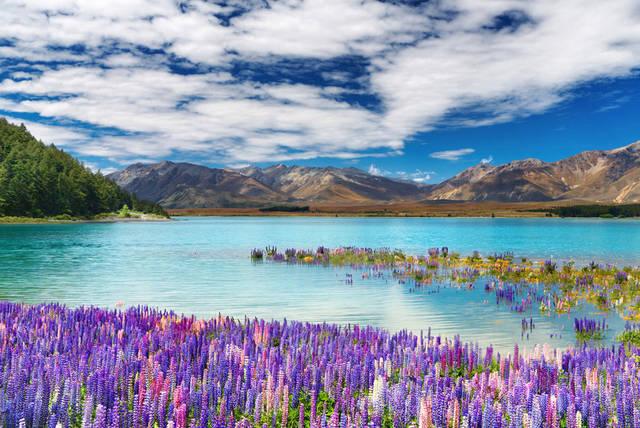 Ufficio Visti Nuova Zelanda : Nuova zelanda e isole cook i viaggi di anna viaggi di nozze su