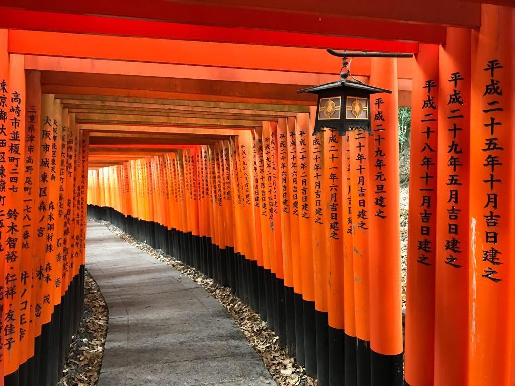 Giappone 2018... I sogni son desideri....